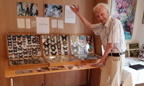 Helmut Gropp mit seinen exotischen Schmetterlingen